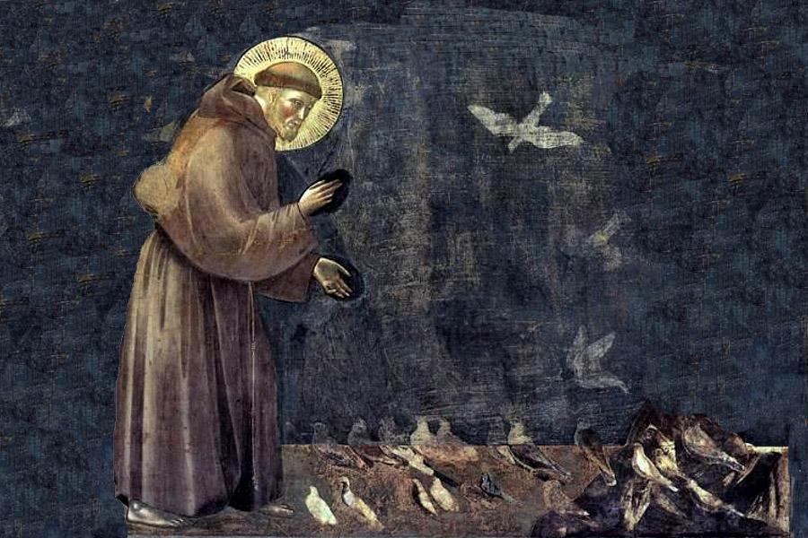 Dierendag en Franciscus van Assisi