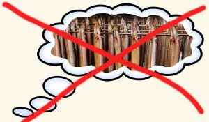 palindroom, geen paling droom