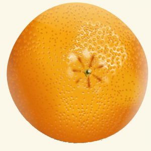 Poriën van de sinaasappel