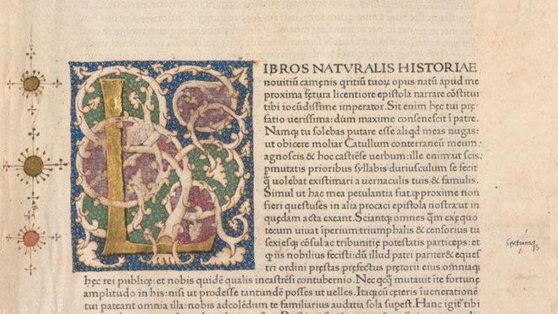 uitvinder van het tekenen (Naturalis Historia)