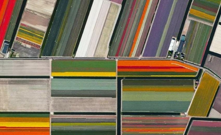 Satelliet abstractie van tulpenveld Lisse