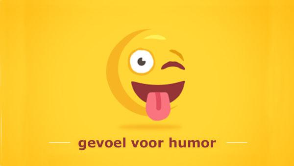 gevoel voor humor