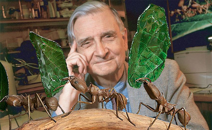 Van mieren bezeten - Edward O. Wilson