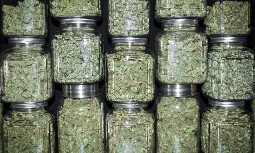 worldwideweed over cannabis etc