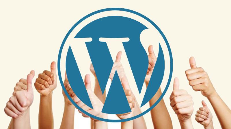 WP website met optimaal resultaat