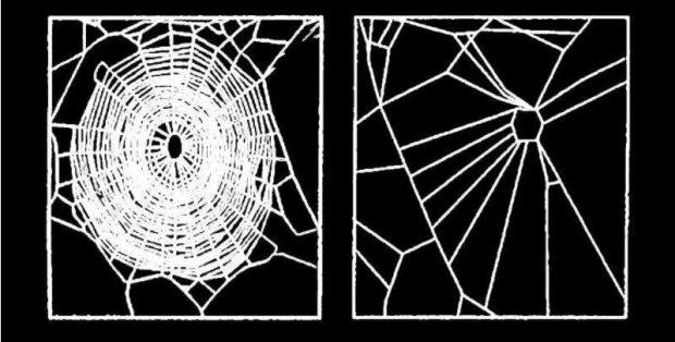 spinnen met hydrochloraat