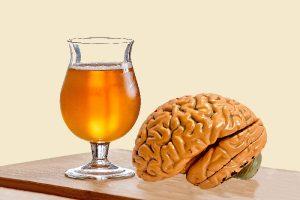 hop in bier houdt je hersenen scherp