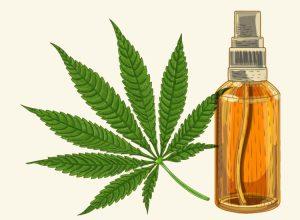medische cannabis